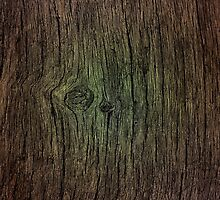 Weathered Wood (One) by NVDesignTeam