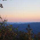 Sunset Serenade by Steve Mezardjian