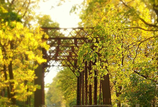 iron bridge in the fall by Severin