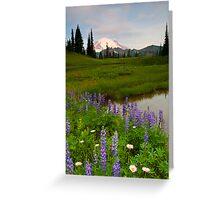 Lupine Sunrise Greeting Card