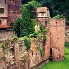Heidelberg Castle 2 by Shaina Lunde