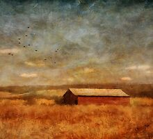 October Afternoon by Lois  Bryan