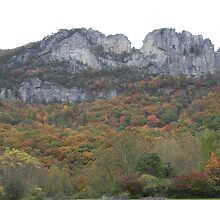 Seneca Rocks by Christopher  Ewing