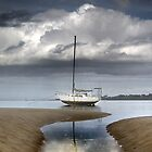 Stuck in the Tide by Tim  Geraghty-Groves