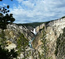 Yellowstone Falls  by NatureLover0212