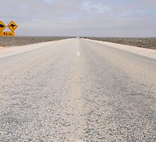 Nullarbor by AndrewBentley