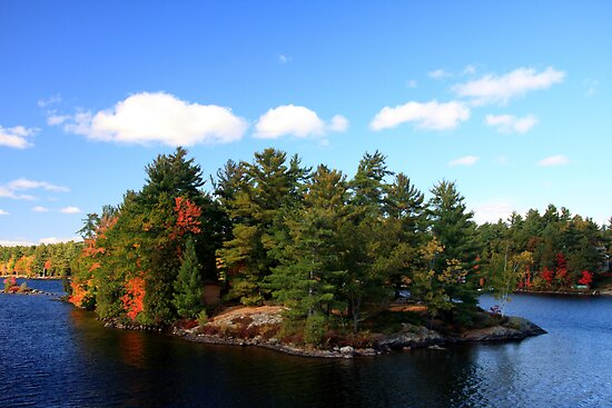 Lake Muskoka Island by Dave Law