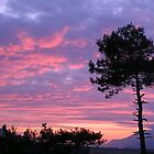 Sakartepe Skies by taiche