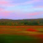 A Blur of Fall Color by CynLynn