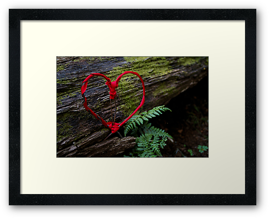 Romance of Nature - Valentine Heart Card / Print by CDCcreative