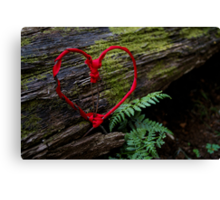 Romance of Nature - Valentine Heart Card / Print Canvas Print