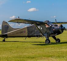 DHC-2 Beaver AL.1 XP820 by Colin Smedley