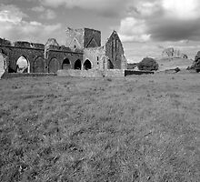Rock of Cashel from Hore Abbey by John Quinn