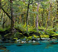 Forest and deep blue river by peterwey