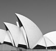 Sydney Opera House by Matt  Lauder