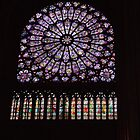 Inside looking out Notre Dame by emant