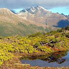 Towards the Greenstone Valley, Routeburn Track, New Zealand by aerdeyn