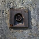 Forgotten Doorbell by hynek
