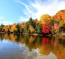 Lake of Bays by Dave Law