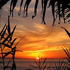 Laguna Beach Sunset by Paige Strayer