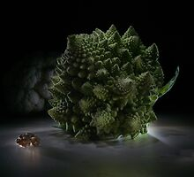 Fractal supper - lightpainted still life by Alexey Kljatov