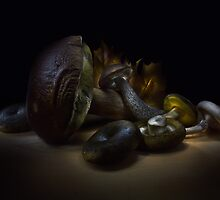 Gifts of september - lightpainted still life by Alexey Kljatov
