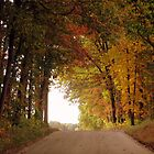 A FALL ROAD by tfm446