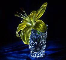 Light inside - still life lightpainting by Alexey Kljatov