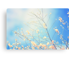 The earth laughs in flowers.  Ralph Waldo Emerson     Canvas Print