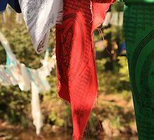 Prayer Flags  by Selena Dittberner