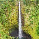 Akaka Falls by Shaina Lunde