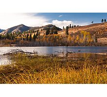 Autumn at Beaver Pond Photographic Print
