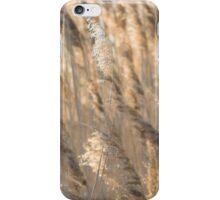 Gold Backlit Reeds iPhone Case/Skin