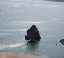 Rock near Golden Gate bridge San Francisco CA by Ilan Cohen