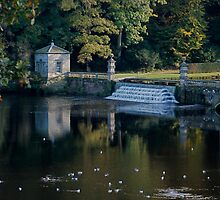 Studley Royal, the River Skell by dougie1