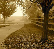 Pathway To Winter by Pamela Hubbard