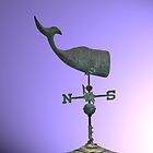 Weather Vane by elisab