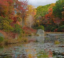 Tranquil Autumn Afternoon by Stephen Vecchiotti