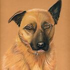 Bella - our favourite girl by Denise Martin