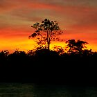 Sunrise on the Amazon River, Brazil by Paris Lee