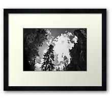 The Black and White Sandias Framed Print