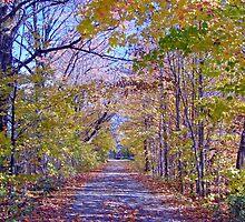 Autumn Entrance #3 by marchello