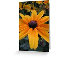 pleasant view Greeting Card