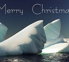 Ice - Christmas Card by Steve Bulford