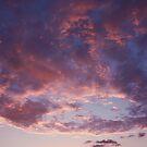 Dusty Pink at Dusk by Jennifer Ellison