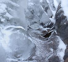 Icy Creek Forms, Pocono Mts. by Anna Lisa Yoder