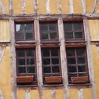 les fenêtres sont penchées pour de vrai! by William Lyszliewicz