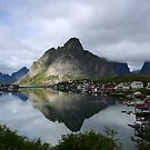 Reine - Lofoten Islands by Willy Vendeville