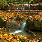 SmallWaterfallinFall by zolim