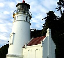 Heceta Head Lighthouse #3 by Chuck Gardner